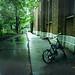 雨の校舎裏