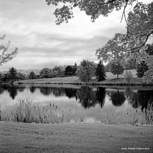 trees summer blackandwhite bw house lake reflection tree 6x6 tlr film nature water barn rural mediumformat reflections square landscape ir photo pond kodak scanner pennsylvania country hc110 pa filter land infrared epson konica v600 perfection 2012 750 80mm selfdeveloped yashicamatem kodakhc110 konicainfrared yashinon80mmf35 750nm konicainfrared750nm konica750nm dyberry epsonv600 epsonperfectionv600photo epsonperfectionv600 bowerr72ir infrared750nm