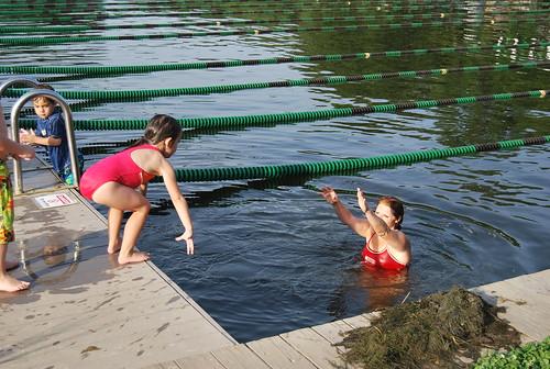 swimming - dive 3