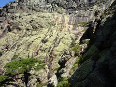 Trace cairnée de Tana di l'Orsu : l'amphithéâtre de Campu Razzinu