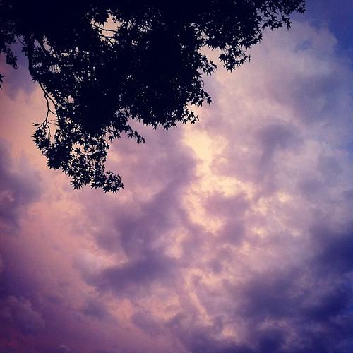 夏のはじめの空。