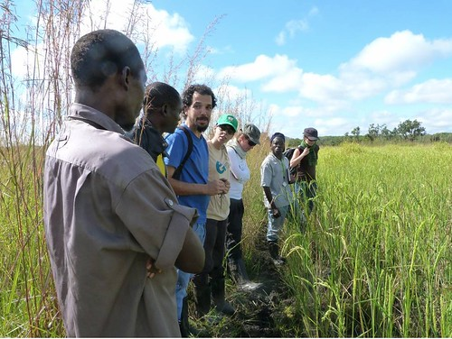Instituciones visitan Programas de Mundukide en Mozambique