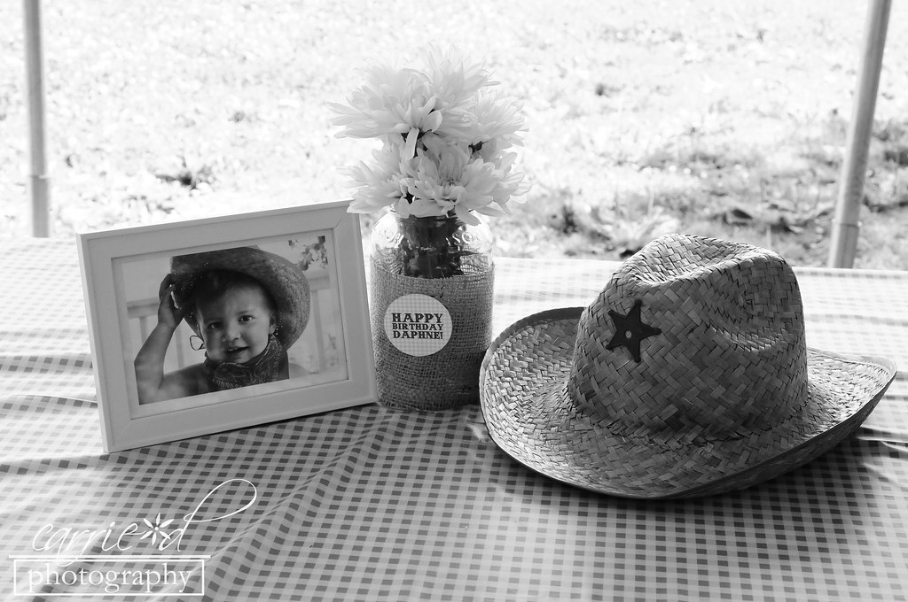 Maryland Event Photographer - Clark's Elioak Farm - Columbia MD Event Photographer - Maryland Childs Birthday Party Photographer - Daphne's 2nd Birthday 7-7-2012 289BLOG