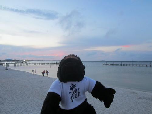 Ivan Visits Pensacola Beach