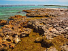 On the Rocks: Little Bahia Honda