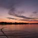 Danube 17