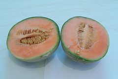 citrullus(0.0), watermelon(0.0), carving(0.0), vegetable(0.0), plant(0.0), produce(0.0), winter squash(0.0), cucurbita(0.0), cantaloupe(1.0), honeydew(1.0), fruit(1.0), food(1.0), muskmelon(1.0), galia(1.0), melon(1.0),