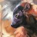 "Young Lemur"" by Aimée Rolin Hoover"
