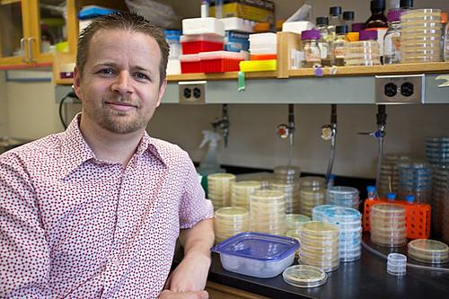 """Departamento de Biologia Evolucionária de Harvard: """"Toda a vida evoluiu – e, sobretudo, por seleção natural"""""""