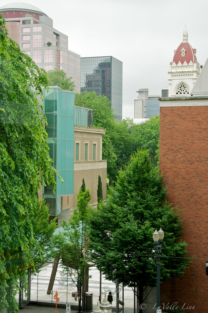 Portland Art Museum through the Trees