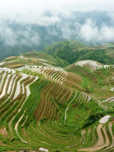 C-Guangxi-Pingan-Terrasse des 7 etoiles (63)