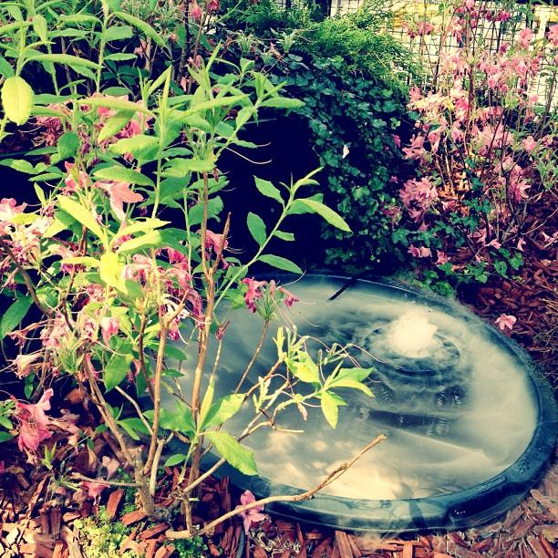 #secretgarden #garden #railwaystation #byebye #helsinki
