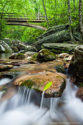 bridge mountain green water wooden cool rocks stream relaxing northcarolina appalachian lush craftsman refreshing streambed coldwater boonefork arched westernnorthcarolina wataugacounty southernappalachian