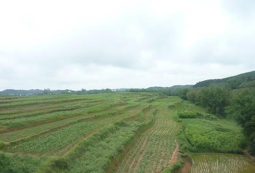 c-guangxi-route nanning-yangshuo (10)