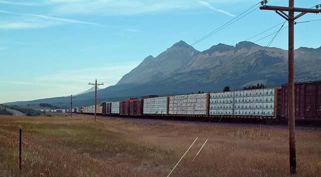 Freight train climbing Marias Pass