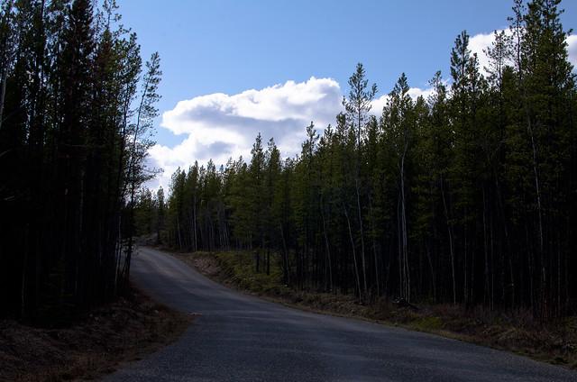 Cassiar Highway