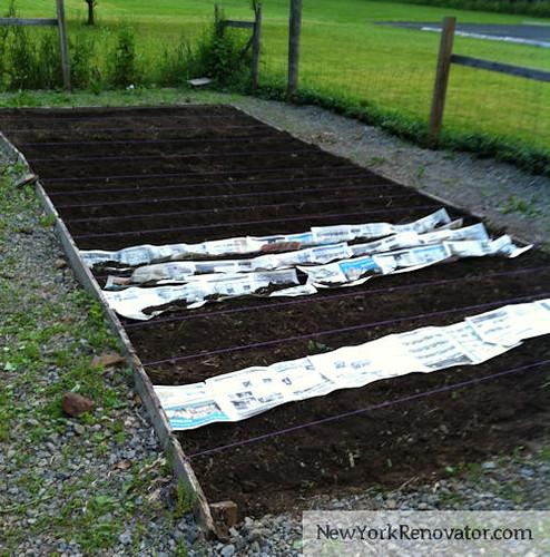 GardenBed2012