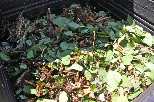 Unfinished Compost