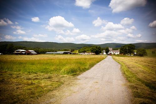 Polyface Farm 2012-0149.jpg