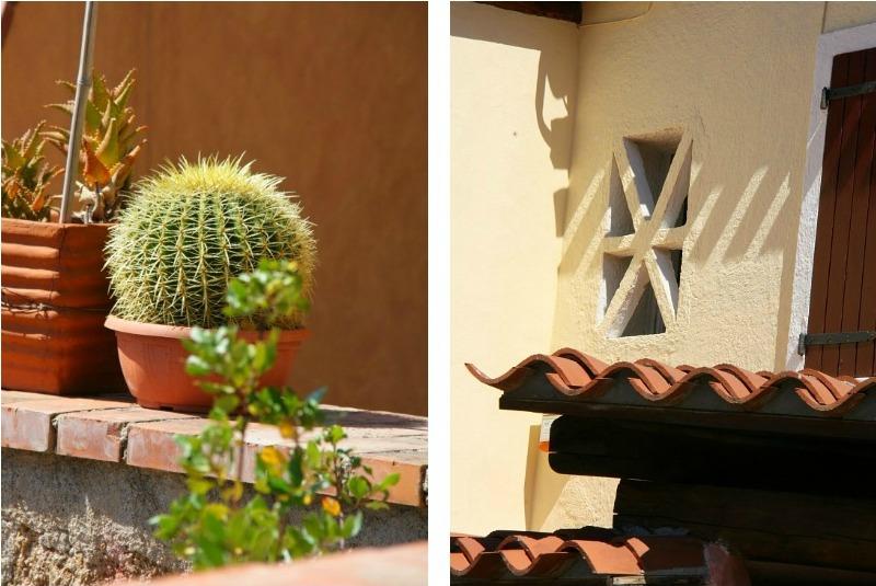 Collage кактус и окошко