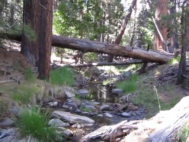 167 Video of the creek at Laws Camp