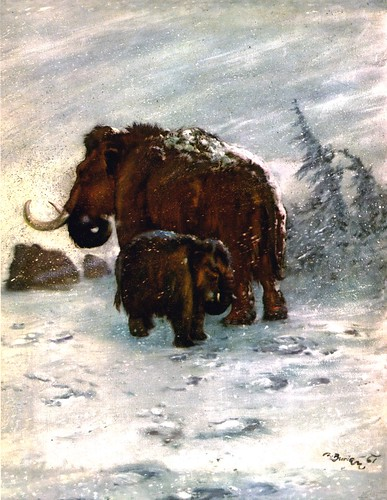 mammoths_snowstorm_by_zdenek_burian_1961