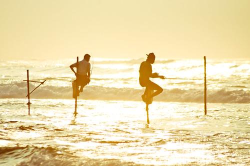 ocean travel beach fishing sand surf adventure srilanka ceylon galle unawatuna stickfishermen thalpe srilanka87761