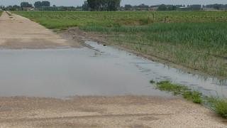 Met de regen van de laatste tijd is de JOrivier buiten haar oevers getreden