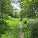 A path through Brenchley Gardens
