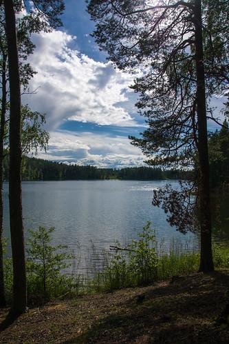 summer nature sony lithuania vasara lietuva gamta mariukasm sal16105 vietovės gražutėbicycletrail gražutėregionalpark gražutėsdviračiųtrasa gražutėsregioninisparkas šiurpelioežeras šiurpelis šiurpelislake