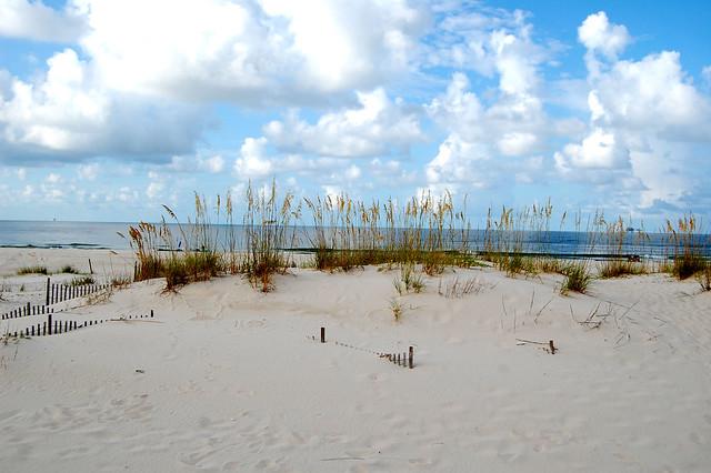 sand dune horizon Alabama (AL)