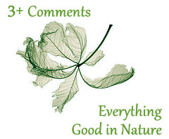 Everything Good in Nature