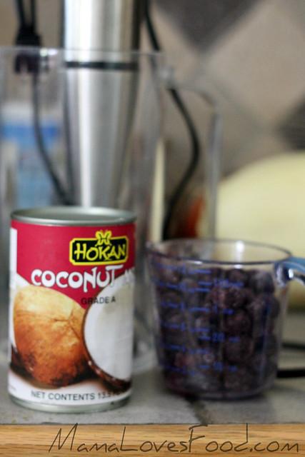 Blueberry Coconut Soft Serve