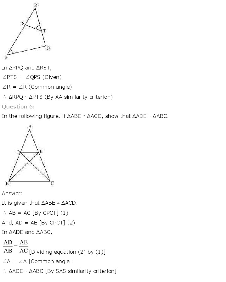 NCERT Solutions For Class 10 Maths Chapter 6 Triangles PDF Download 2018-19 freehomedelivery.net