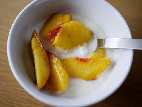 07-31 yogurt