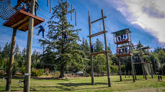 Cottage Lake ropes course