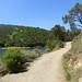 Del-Valle-2012-04-28