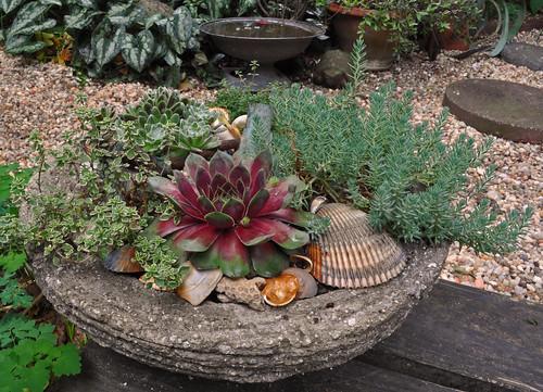 New Planter (2)