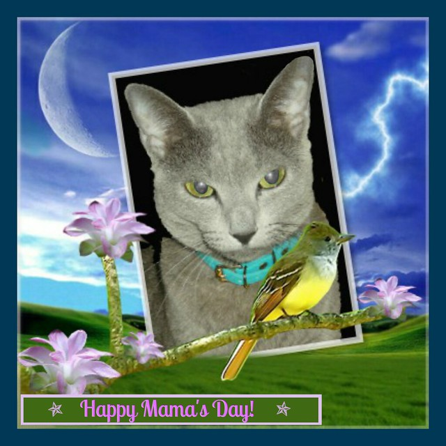 Megumi says... Happy Mama's Day!
