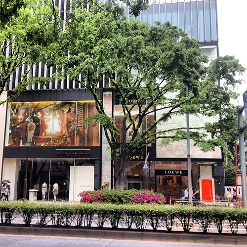 Omotesando #omotesando #tokio #tokyo #japan #japon
