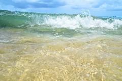 Barbados-2MY_2865