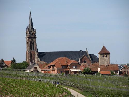 dambach la ville- chateaux- bernstein- ortenbourg 329