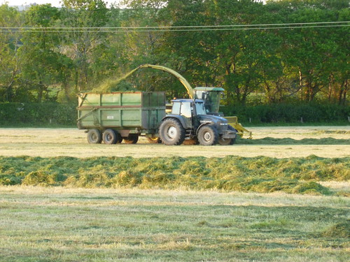 Making Haylage