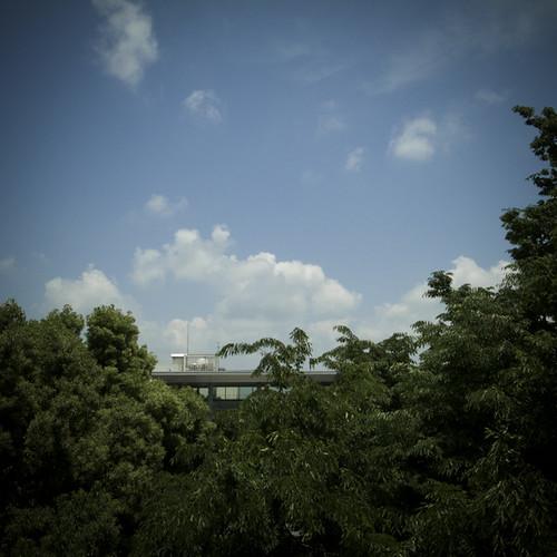 Konodai Jungle View, Ichikawa-shi
