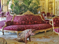 Un invité inattendu dans le grand salon Napoléon III
