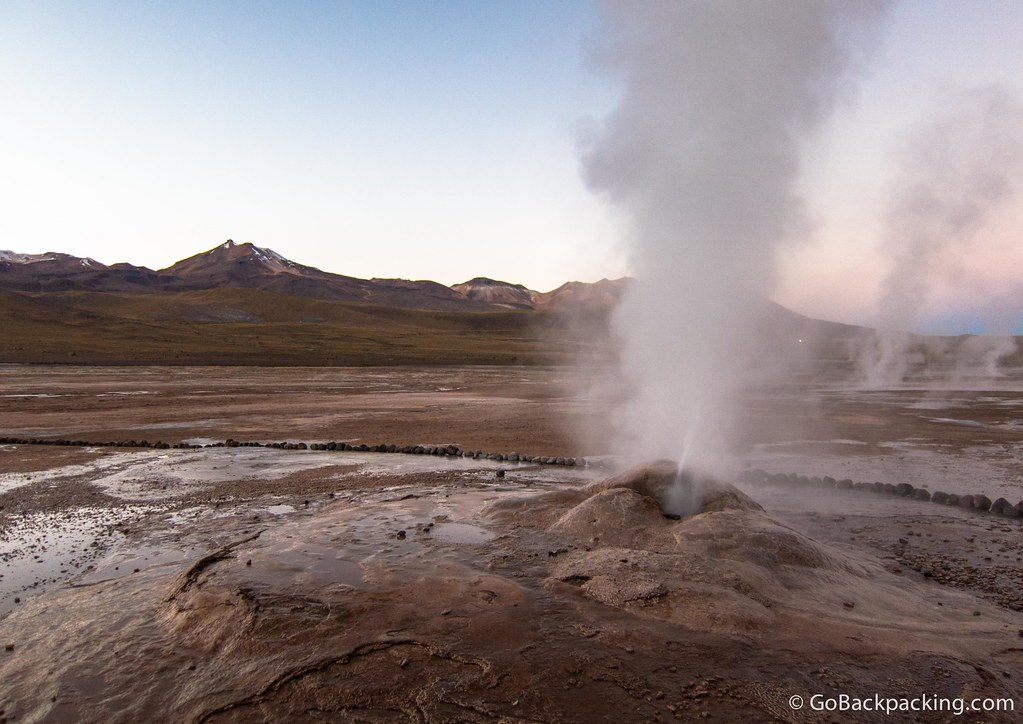 One of the over 80 geysers blowing off steam