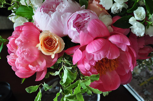 Peonies, mock orange, roses