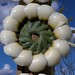 Vista cercana de un arco hecho de pétalos del base del Sotol - arch made of petals from Sotol trunks; entrada hacia Zapotitlán Palmas, Oaxaca, Mexico por Lon&Queta