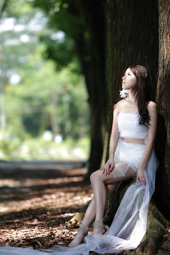 [フリー画像素材] 人物, 女性 - アジア, 人物 - 樹木, ウエディングドレス, 人物 - 見上げる, 台湾人 ID:201206291800