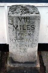 VIII Miles